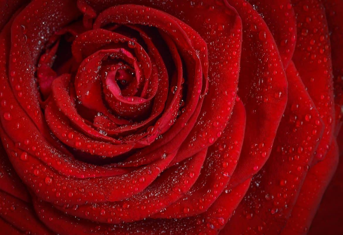 The Energy Of Love From Merlin Attunement