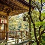 Grandmaster Cedar Temple Attunement