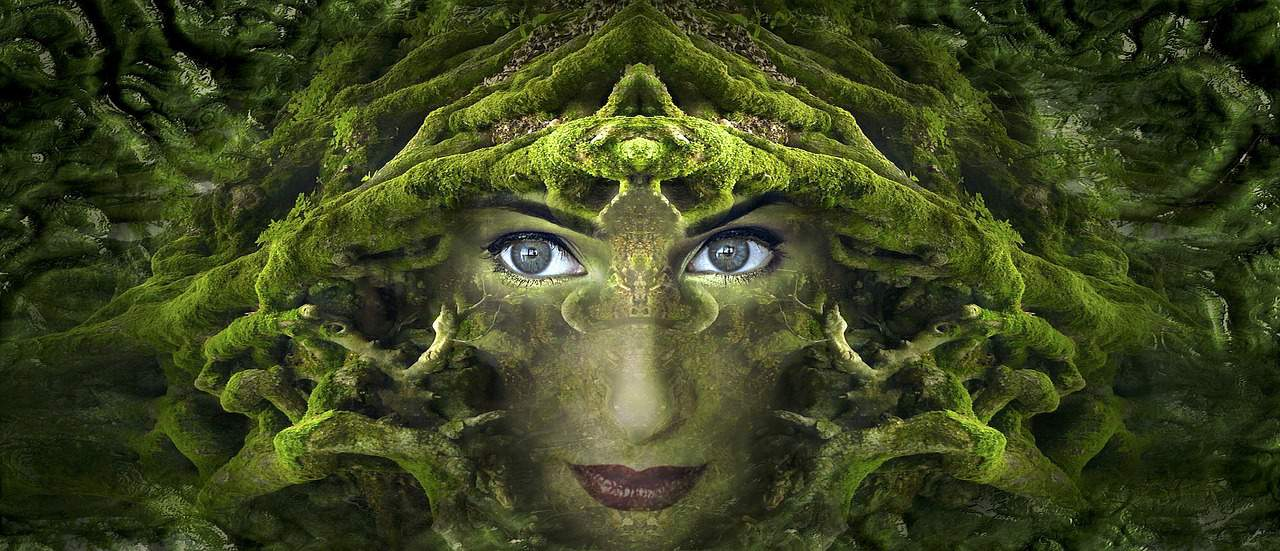 Wild Thing—Positive Energy of Nature Spirits Attunement
