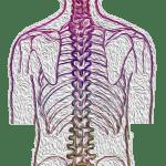 Scoliosis Healing Reiki