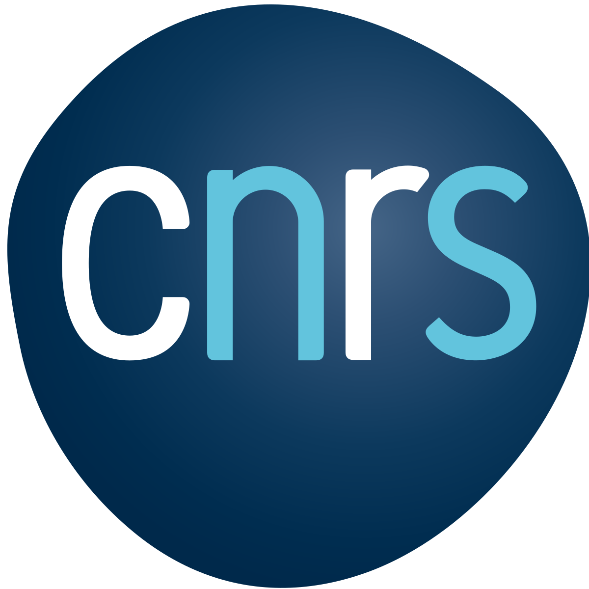 Logo de Centre national de la recherche scientifique (CNRS) Bretagne et Pays de la Loire