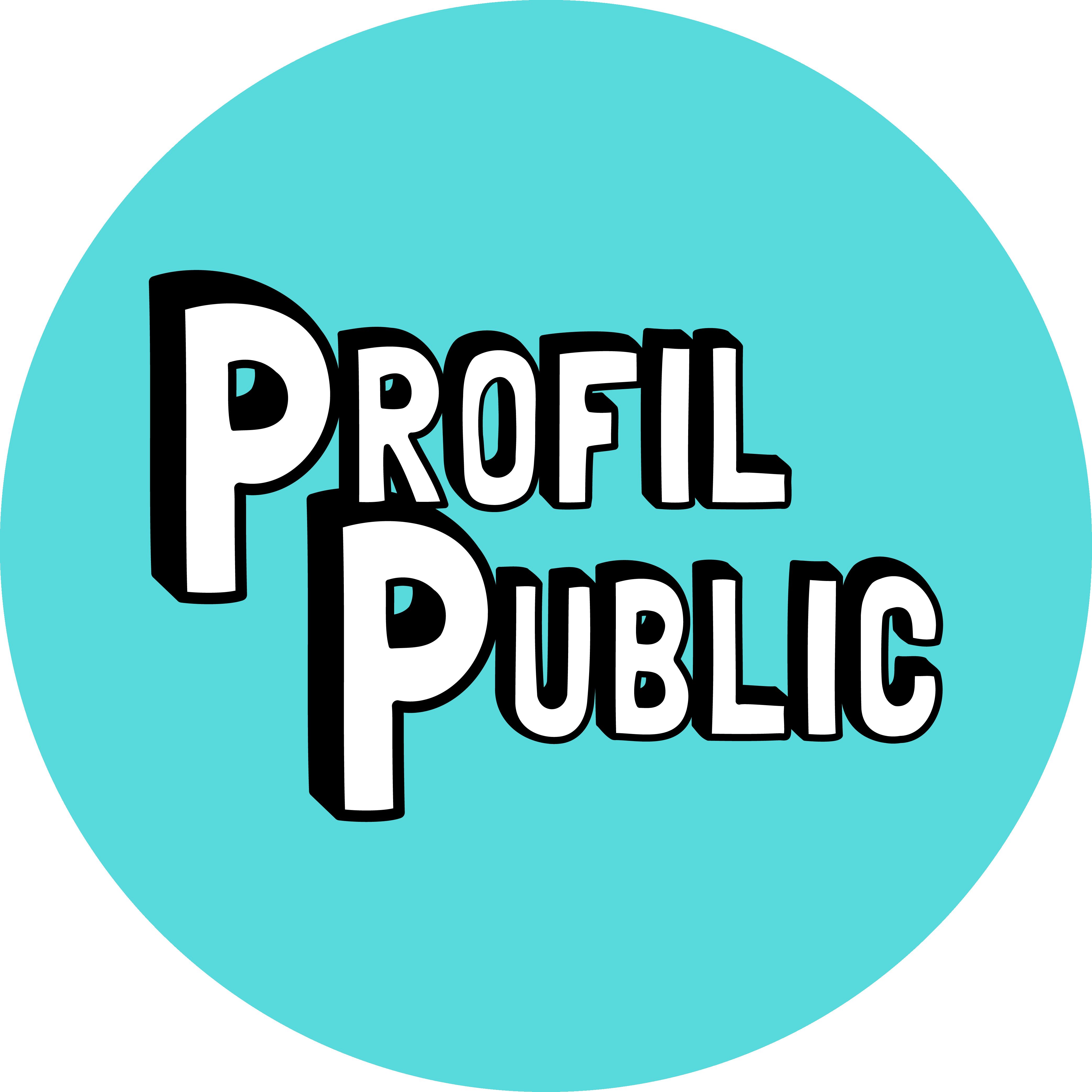 Logo de Profil public (www.profilpublic.fr)