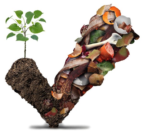Compostcheck