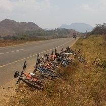 Bikes On Road Web 209X209