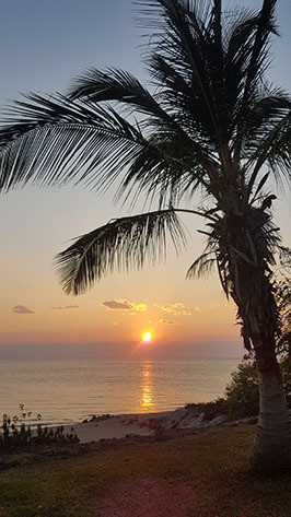 sunset-carrousel.jpg