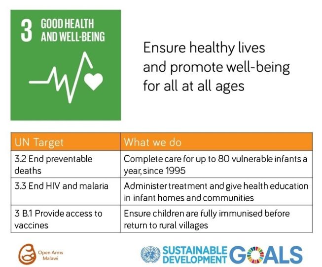 SDG_Good_Health_Wellbeing.jpeg