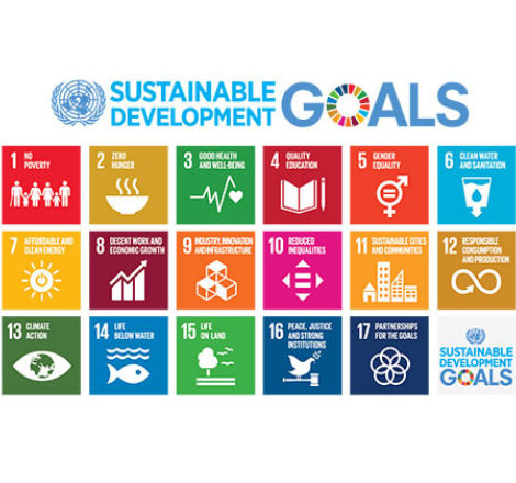 Taking on global goals
