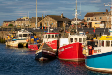 Break Free for English Tourism Week at Amble Links: 5 Activities In Northumberland