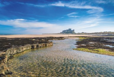 Experience Northumberland's beauty, all year round