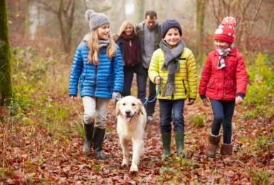 The Perfect Off-park Walks - for You and Your Four-legged Friend