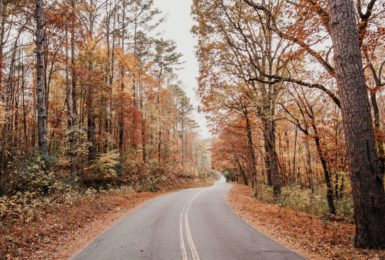 Travel Tips for Autumn