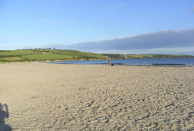 Par Sands has the only beach in the area that is dog friendly all-year round!