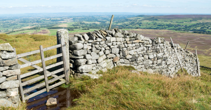 There's so much to see and do in and around the Yorkshire Dales