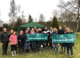 Branching out into our sixth year with The Woodland Trust