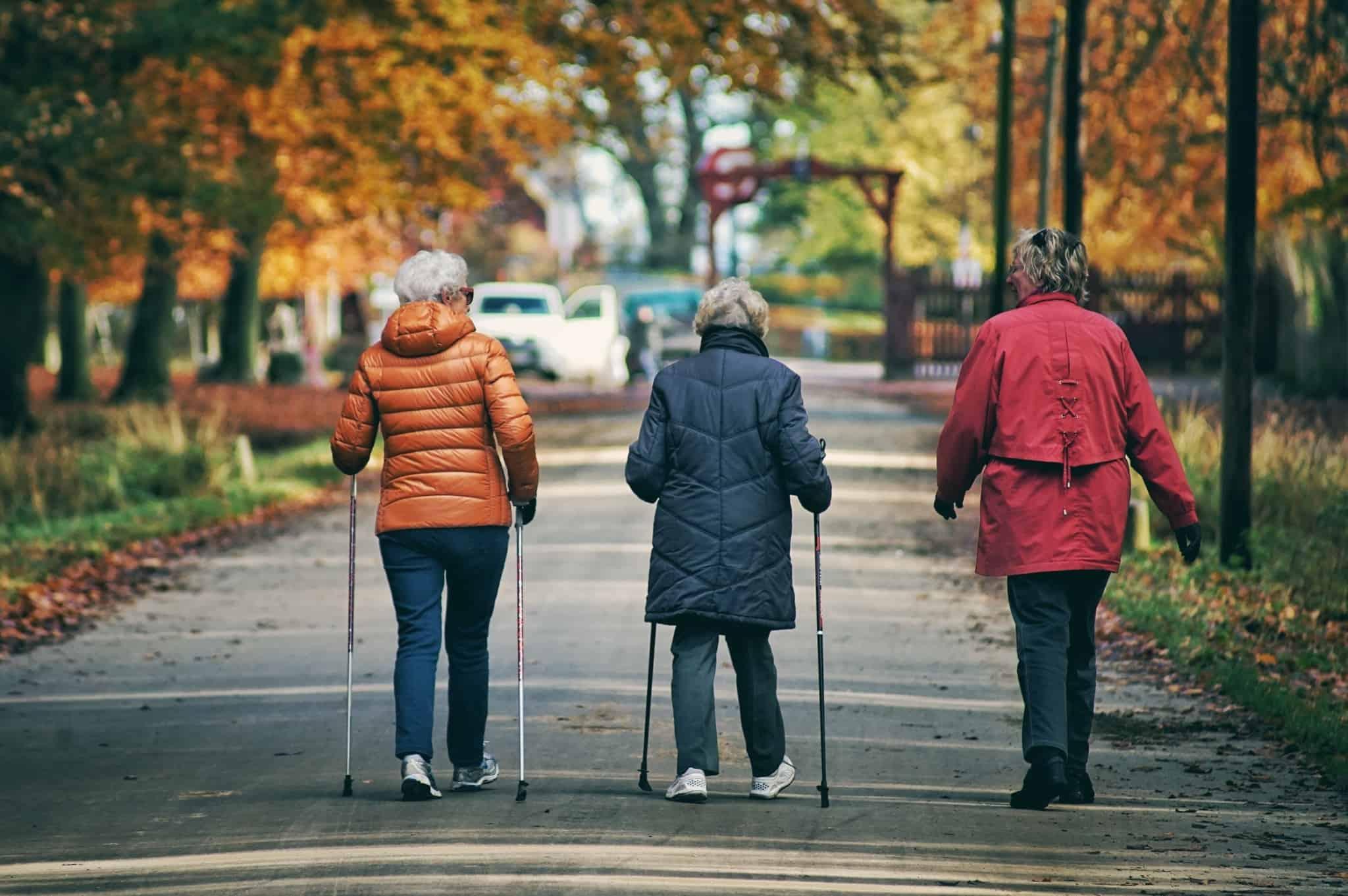 Cuidador-Informal_passeio-de-idosos_parque