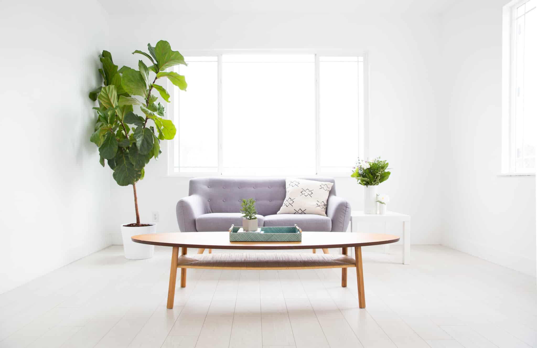 sala de estar com mesa redonda de madeira sofa cinzento de dois lugares e planta do lado esquerdo