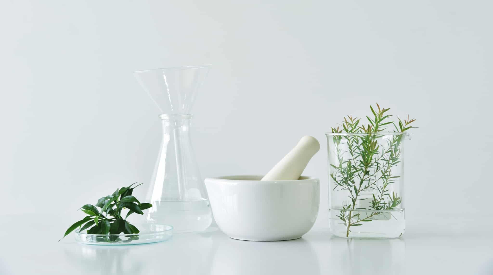 instrumentos de botanica
