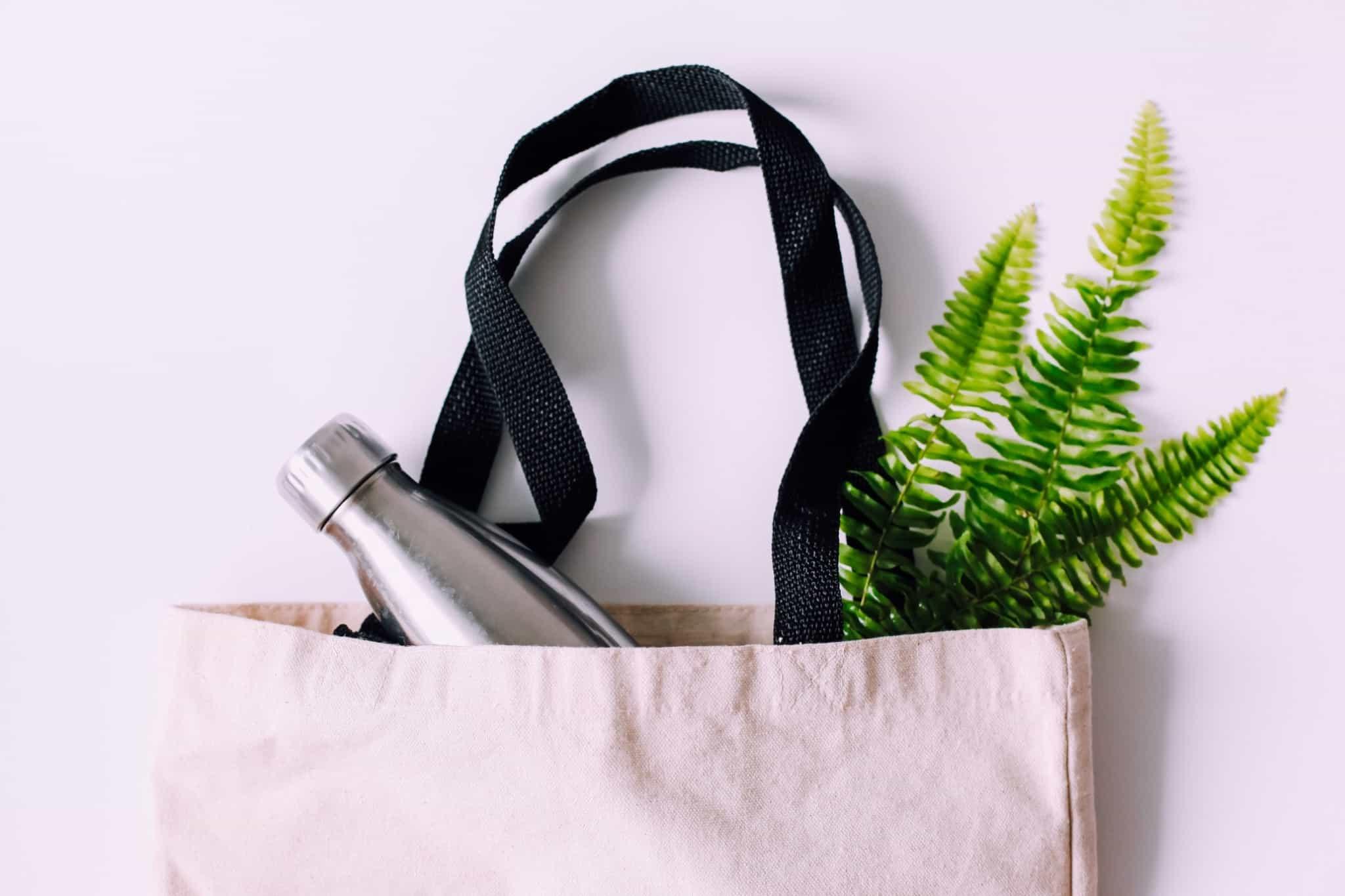 saco de pano com garrafa de agua de metal e planta