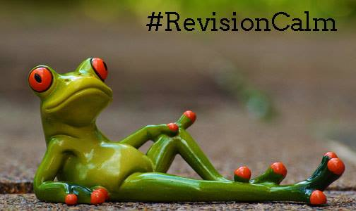 Revision Calm Frog