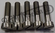AMC GEARBOX OUTER COVER SLOTTED SCREW SET