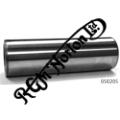 RGM LIGHTWEIGHT GUDGEON PIN 600/650 TWINS