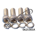 "MANIFOLD TO HEAD ALLEN BOLTS (5/16"" BSW) (STAINLESS STEEL)(4)"