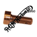 CAMFOLLOWER LOCATING PLATE SCREW