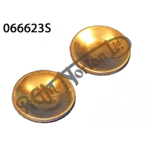 SWINGING ARM CORE PLUGS FOR LATER 850 (PR)