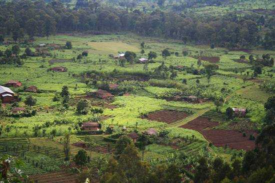 The fertile valleys of Rwanda