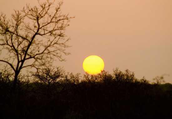 Catch the sun set over Royal Malewane