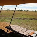 This is an exclusive-use mobile tented camp
