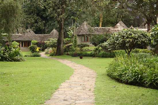 Stay at Serena Mountain Lodge, Arusha, Tanzania