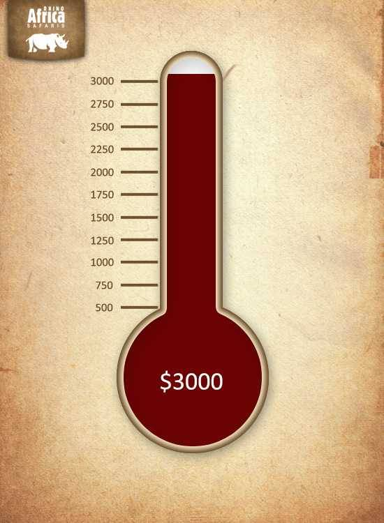 Charity Thermometer