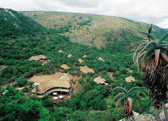Shamwari Eagles Crag