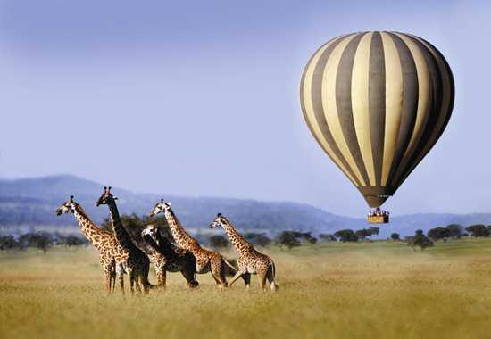 Go hot air ballooning with Singita in the Serengeti