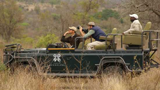 Photographic safari at Londolozi