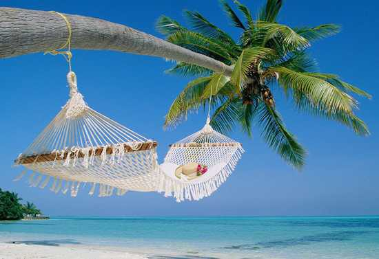 Eine weiße Hängematte an einer Palme an einem weißen Sandstrand bei Sonnenschein und blauem Himmel