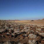 Stark desert landscapes