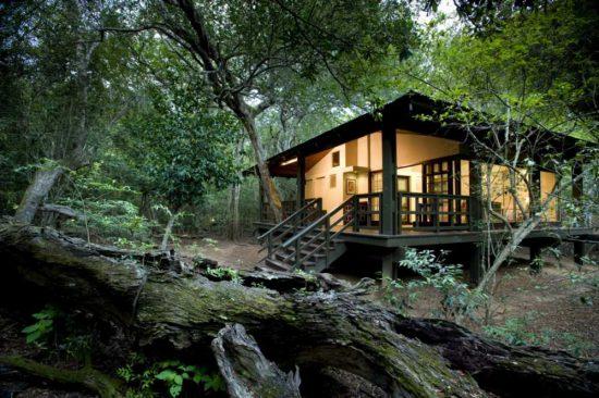 Außenansicht der Phinda Forest Lodge im grünen Wald