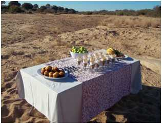 AndBeyond's Exeter lodges specialise in creating specialise surprises for the guests to find whilst on safari