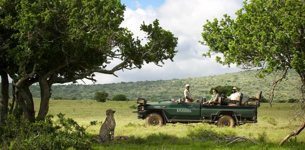 Photo Credit: Kwandwe Private Game Reserve.