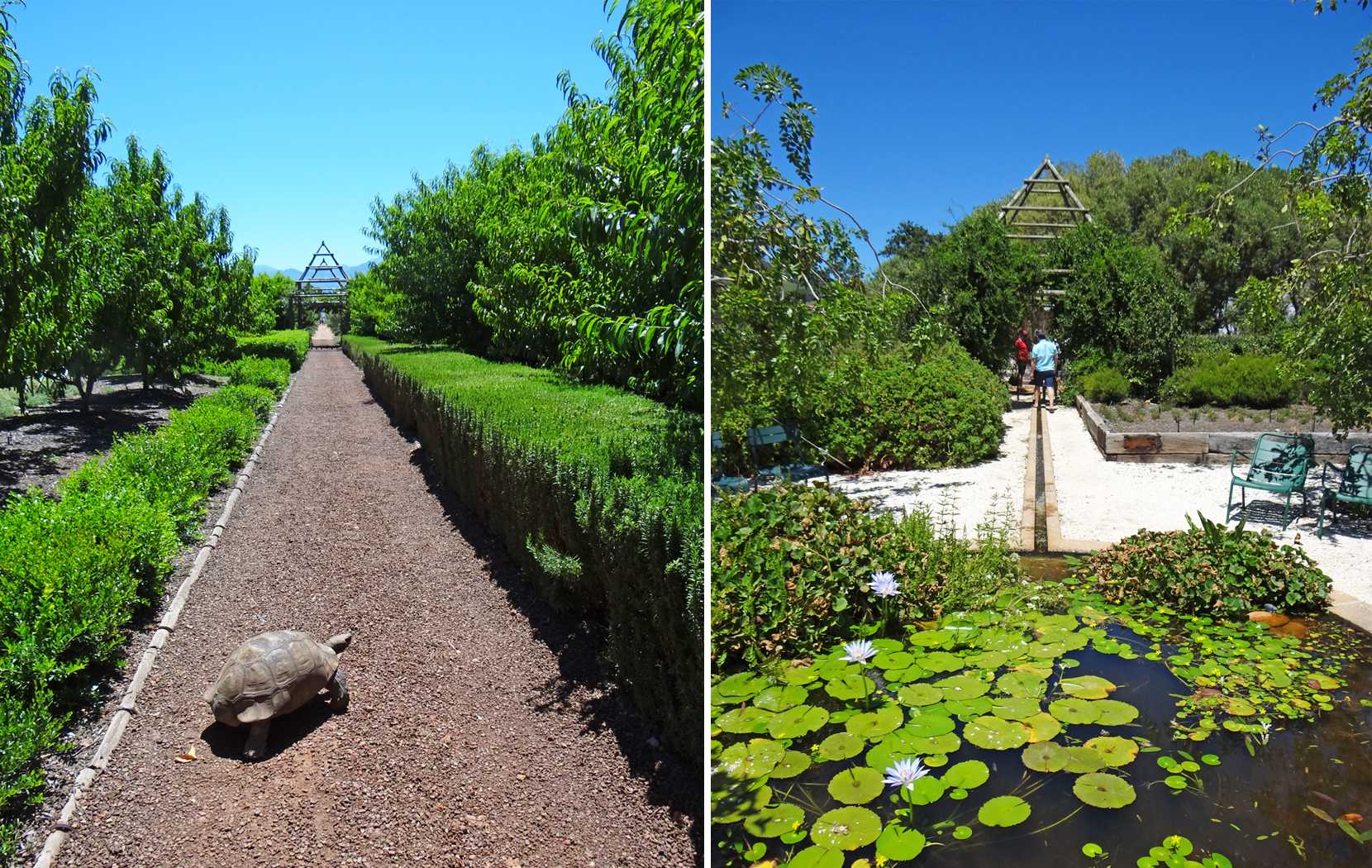The Babylonstoren garden is at the heart of the farm