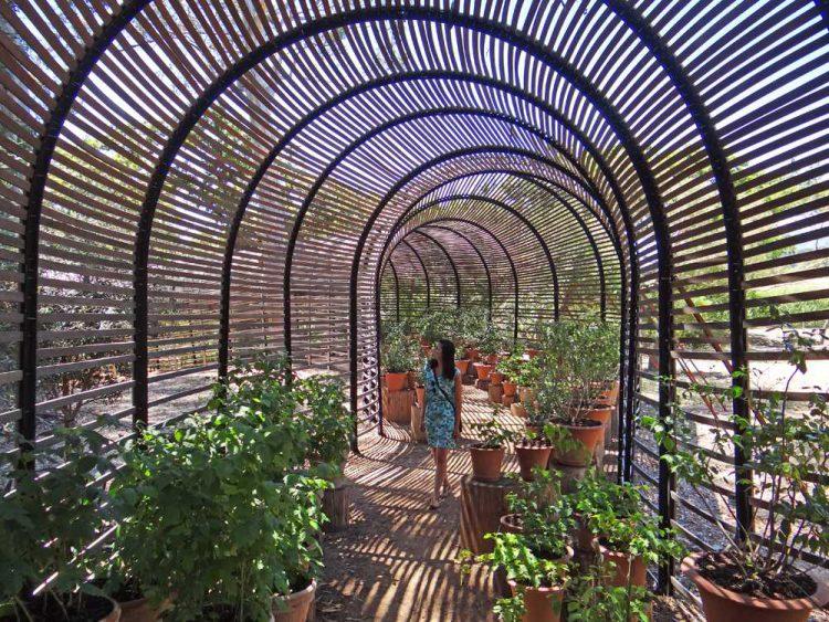 Garten von Babylonstoren