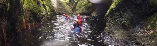 Swimming in the canyon