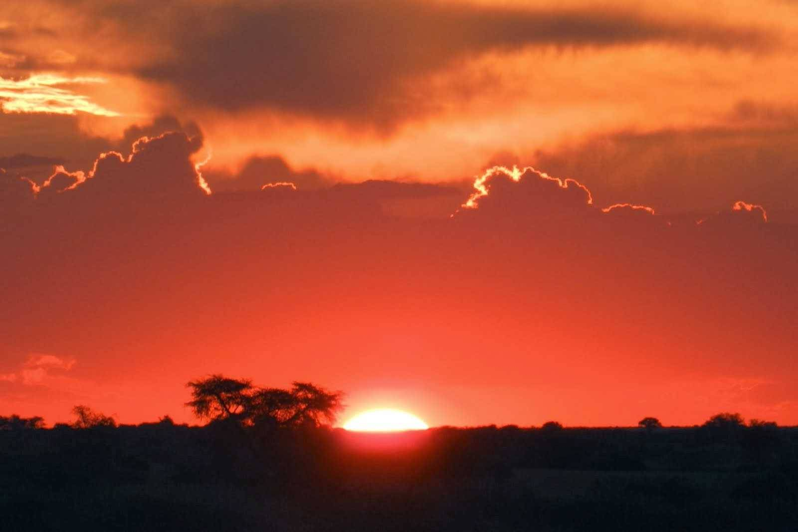 """""""At the top of one of the dunes we watched the sun set. The barman at the lodge had snacks and drinks waiting for everyone. It was a beautiful sight to see the sun set over the Kalahari Desert."""""""