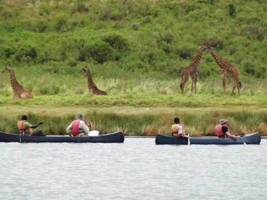 Canoeing on Lake Momella - Arusha National Park