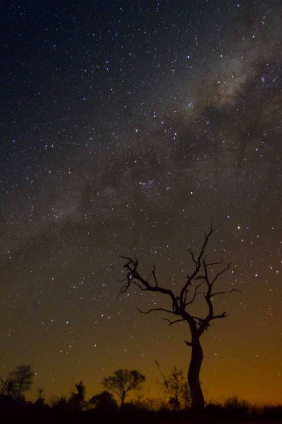 clear night at londolozi