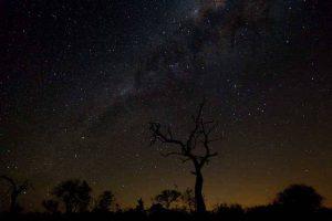 Nuit à la belle étoile en Afrique à Sbi Sand. Vacances romantiques à Sabi Sand en Afrique du Sud pour un voyage safari de luxe.