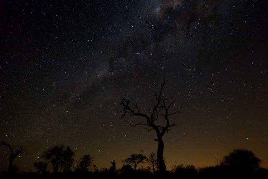 Ein funkelnder Sternenhimmel in Afrika