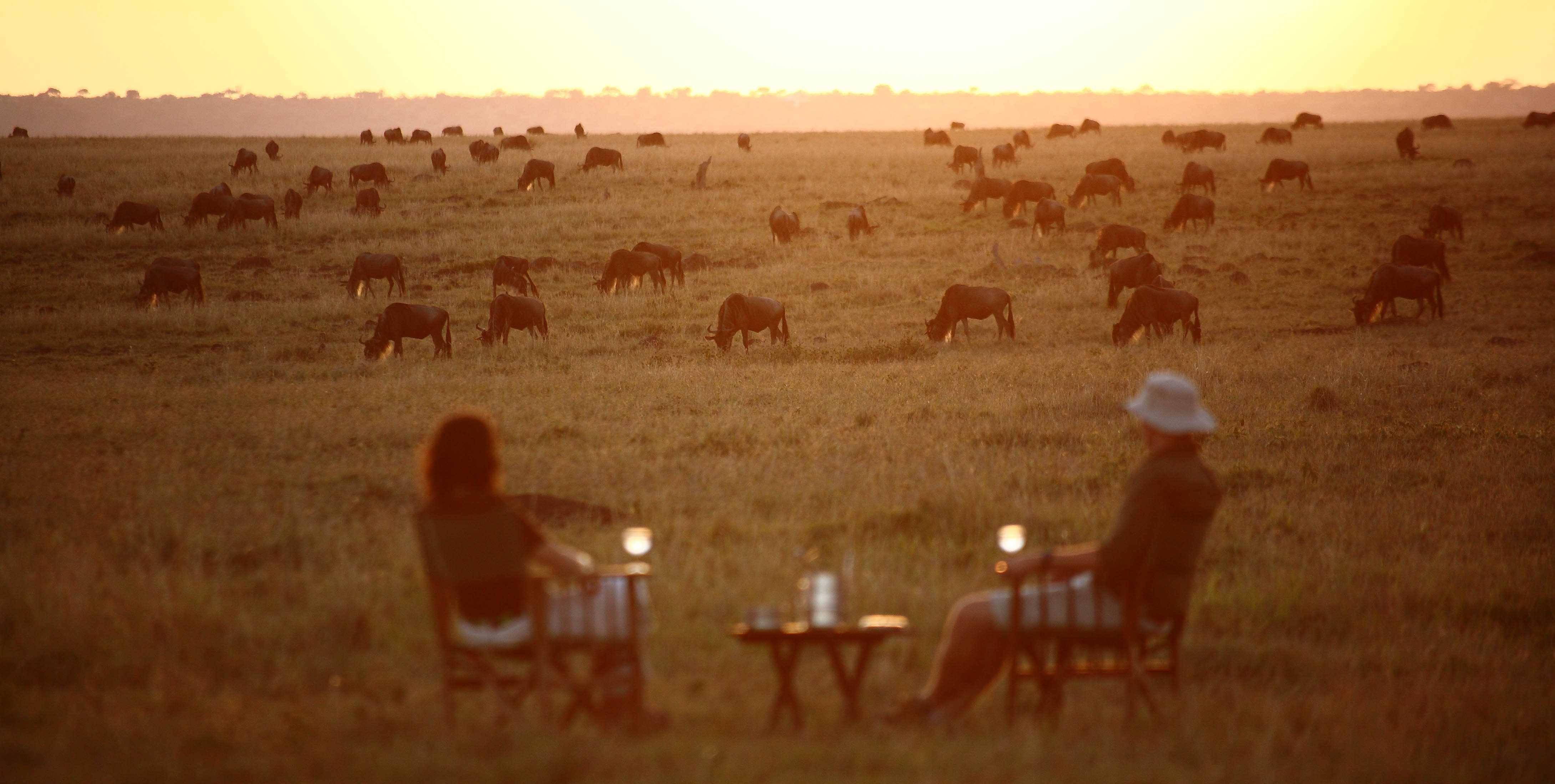 Sundowners in the Serengeti
